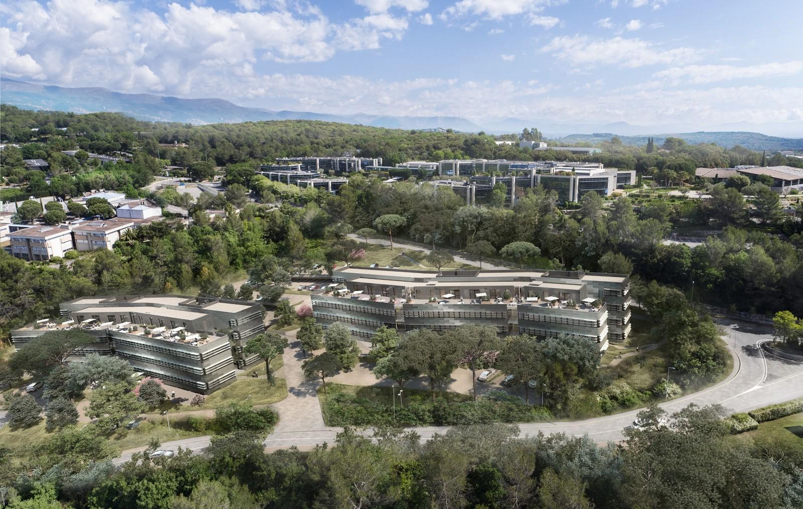 Immeuble de bureaux au cœur de SOPHIA ANTIPOLIS - Provence Alpes Côte d'azur